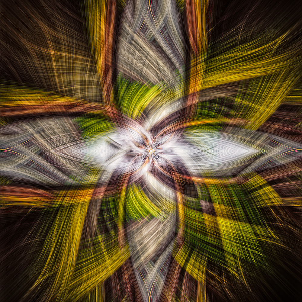 Photo twisting and swirling-flipnbend-02a.jpg