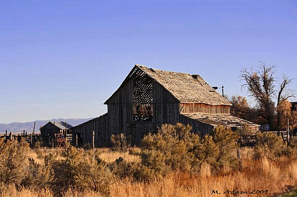 Post your barns and rural structures.-barn-rush-valley.jpg