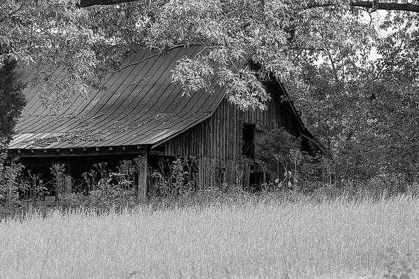 Old and Abandoned-ahw_4268.jpg
