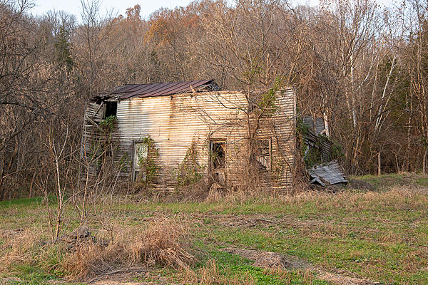 Old and Abandoned-nik_0836.jpg