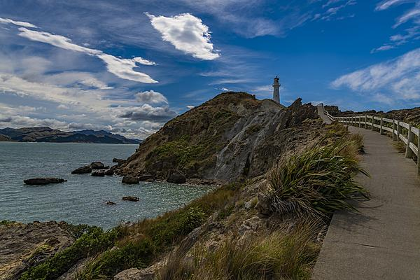 Lighthouse-lighthouse-nz.jpg