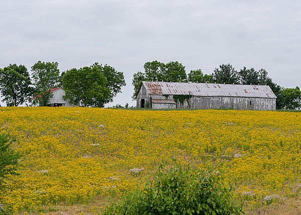 Post your barns and rural structures.-hwy-53-5927.jpg
