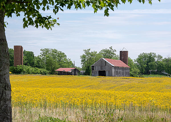 Post your barns and rural structures.-hwy-53-5941-edit.jpg