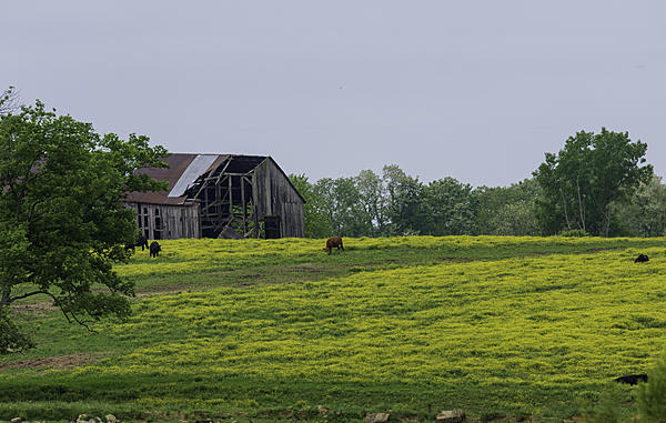 Post your barns and rural structures.-a72_8293-edit.jpg