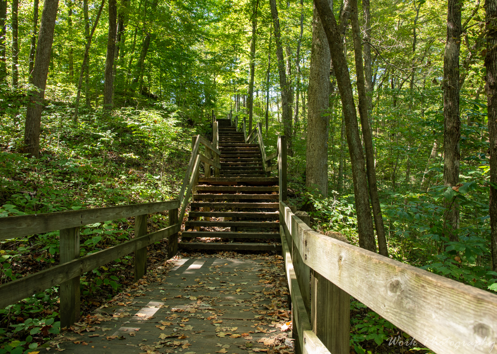 POST YOUR STEPS, STAIRWAYS, STAIRCASES, and LADDERS HERE!-spring-mill-8756.jpg
