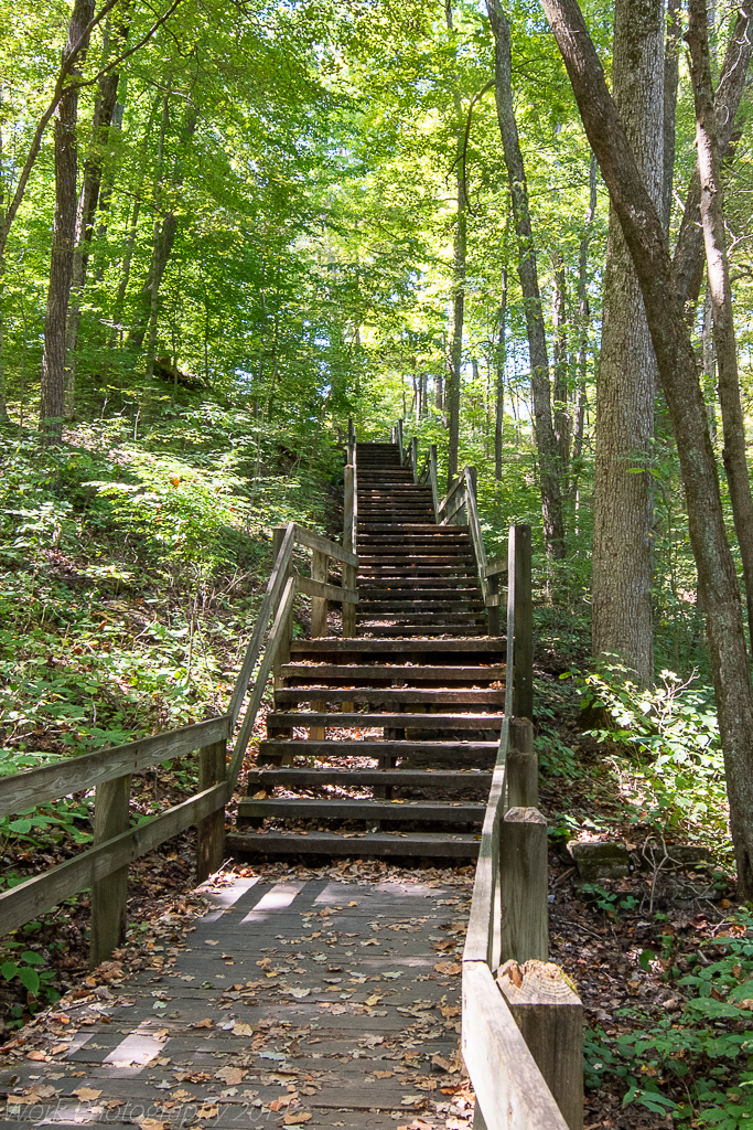 POST YOUR STEPS, STAIRWAYS, STAIRCASES, and LADDERS HERE!-untitled-shoot-6894.jpg