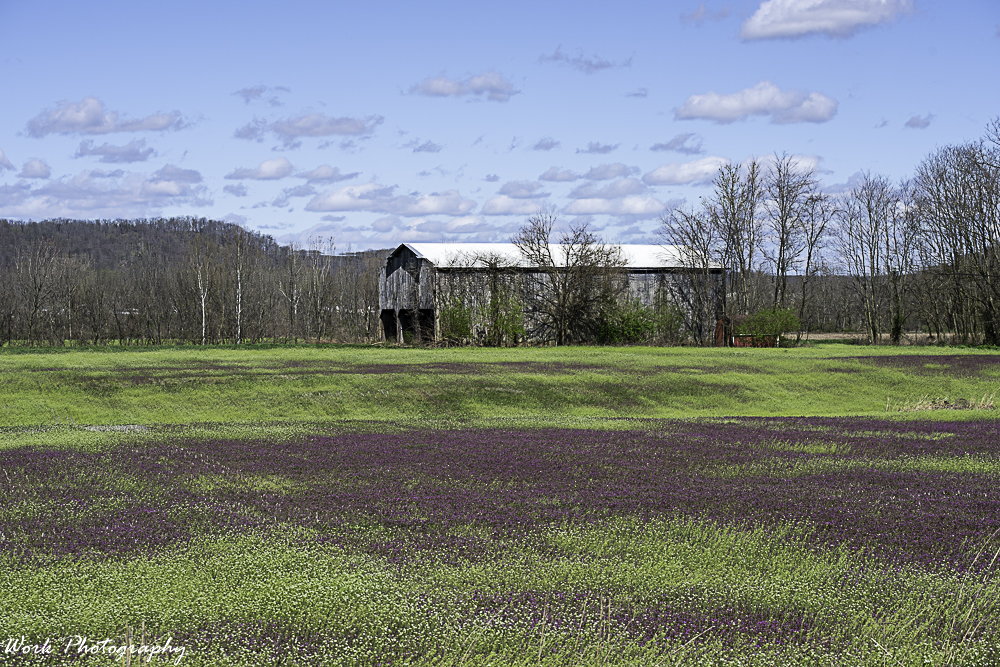 Post your barns and rural structures.-20200329-r81_3301-edit.jpg
