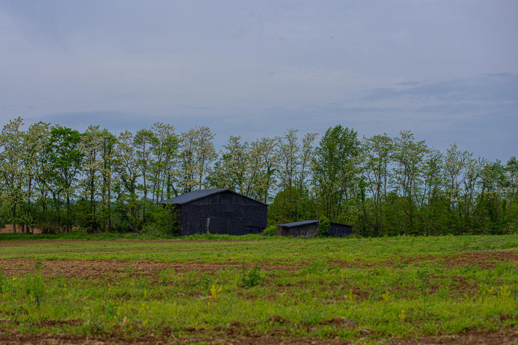 Post your barns and rural structures.-untitled-0800.jpg
