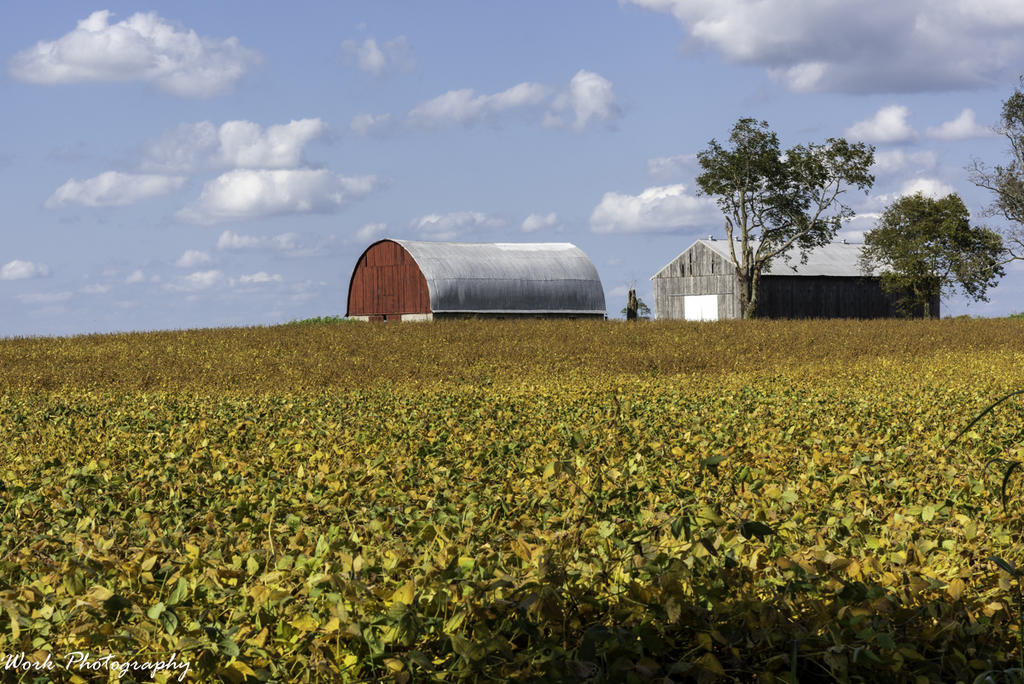 Post your barns and rural structures.-20200927-r81_5443.jpg