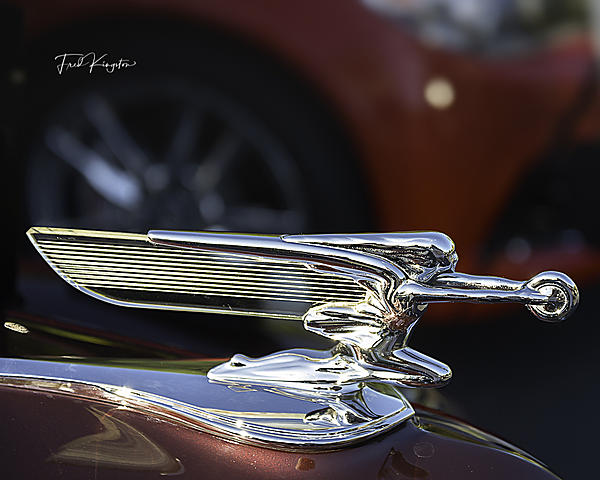 Post your Hood Ornaments/Logos-hoodornament.jpg