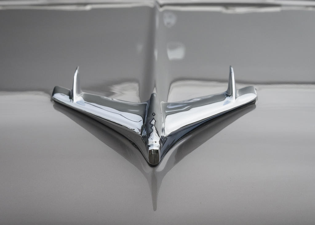 Post your Hood Ornaments/Logos-_dsc7421_low-res.jpg