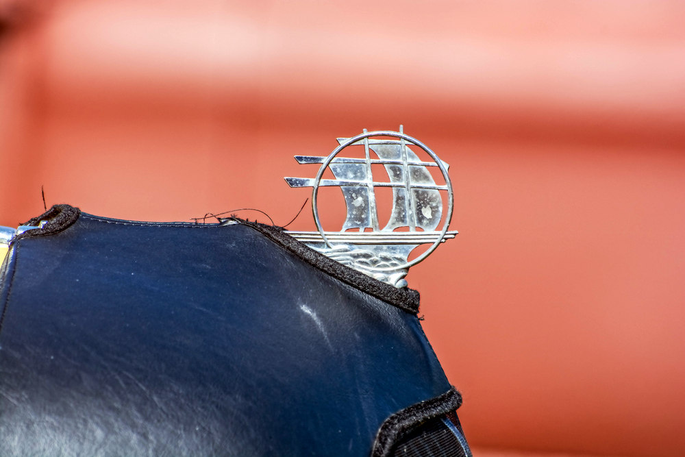 Post your Hood Ornaments/Logos-710_7214-edit.jpg