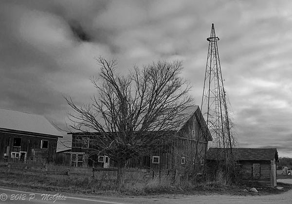 Post Your Black and Whites Photos!!-dsc_1516.jpg