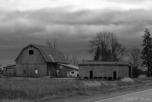 Post Your Black and Whites Photos!!-dsc_1556.jpg