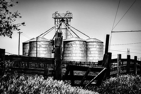 Post Your Black and Whites Photos!!-silos-1-2.jpg