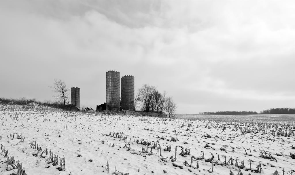 Post Your Black and Whites Photos!!-dsc_0774_4.jpg