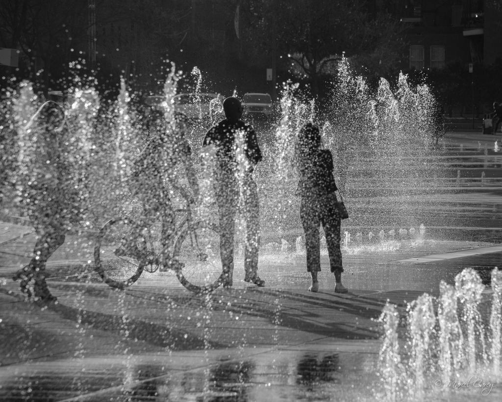Post Your Black and Whites Photos!!-dsc_3544.jpg