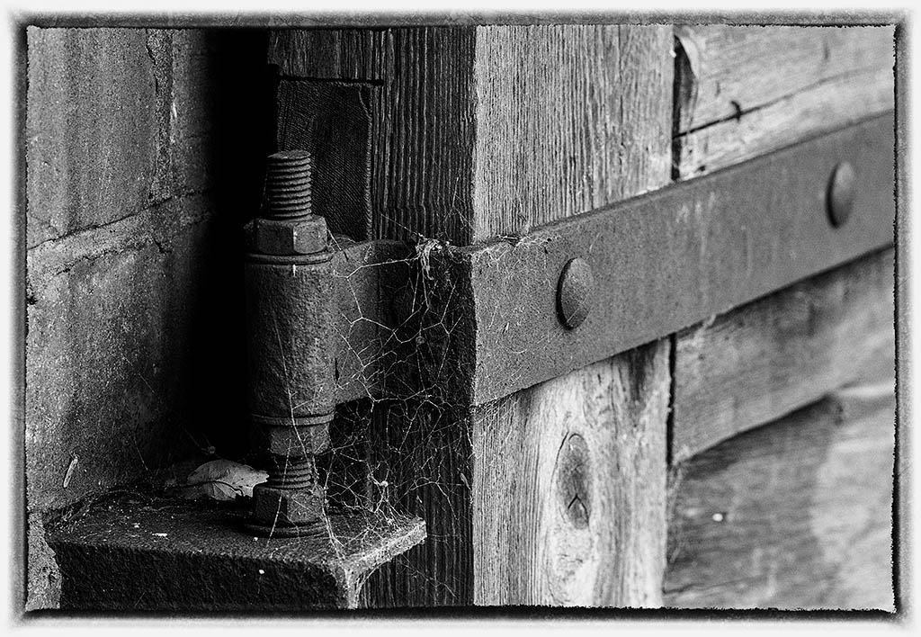 Post Your Black and Whites Photos!!-dsc_1934_35572260540_o.jpg