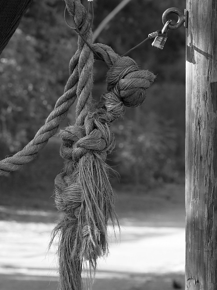 Post Your Black and Whites Photos!!-rope.jpg