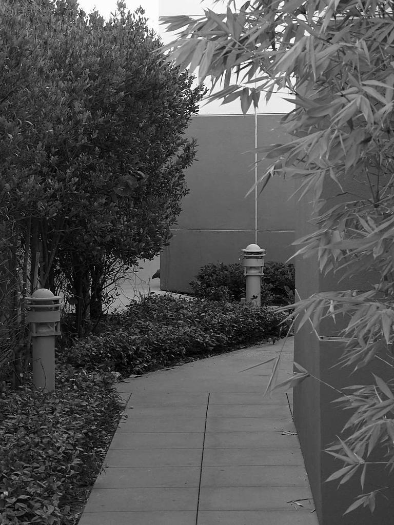 Post Your Black and Whites Photos!!-walkway.jpg