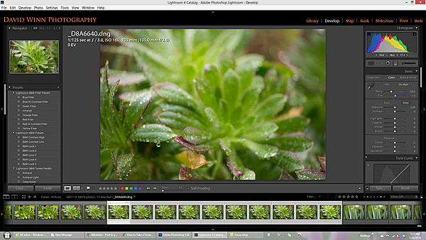 What is the best nikon photography camera?-untitled-1.jpg