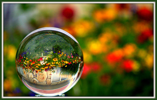 Upgrade of D40 camera-crystal-garden.jpg