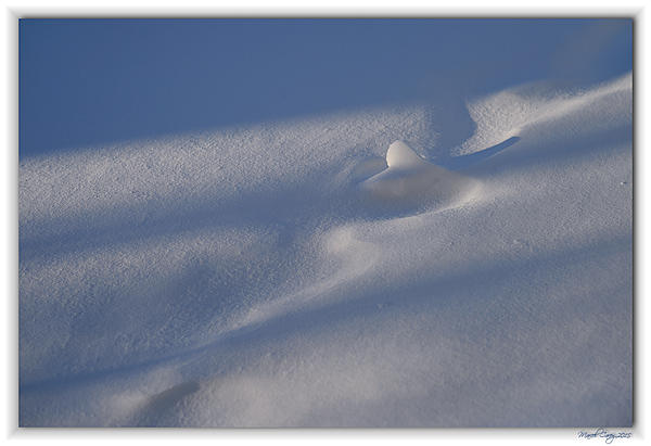 Protection of my camera-neige.jpg
