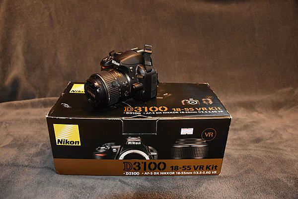 Considering used D-3100 - Thoughts?-019019.jpg