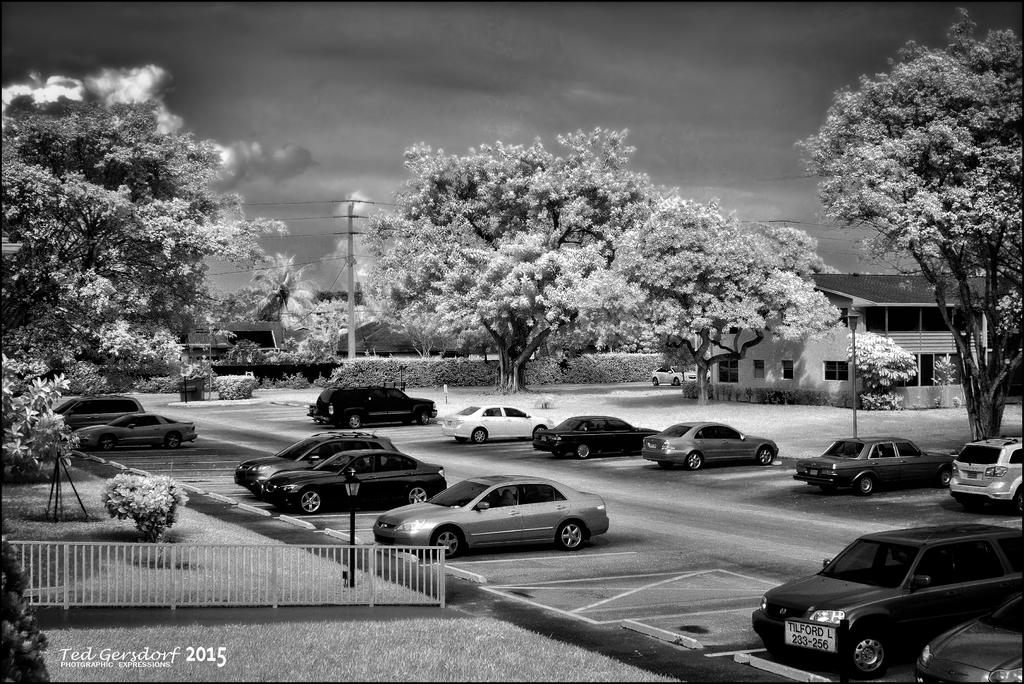 D3300 Infrared Conversion Photos-dsc_0002.2-bw.jpg