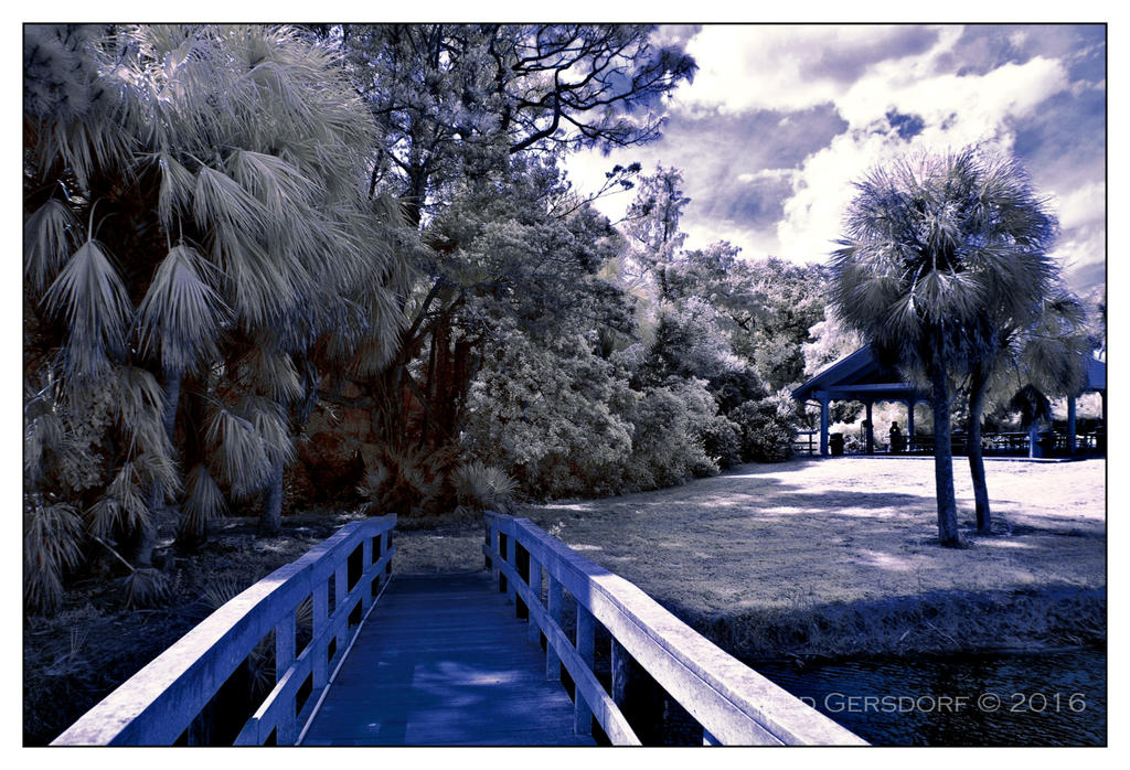 D3300 Infrared Conversion Photos-10-25-16-tradewinds-ir-5.1sm.jpg