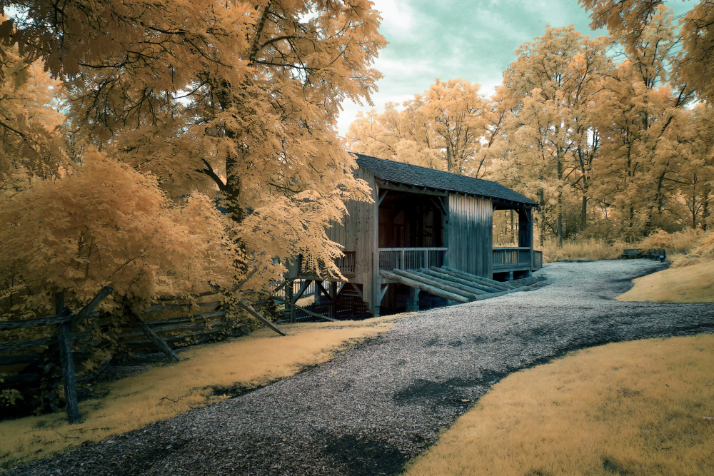 D3300 Infrared Conversion Photos-8-6-17-kirtland-6_0003cma-1-11-17.jpg
