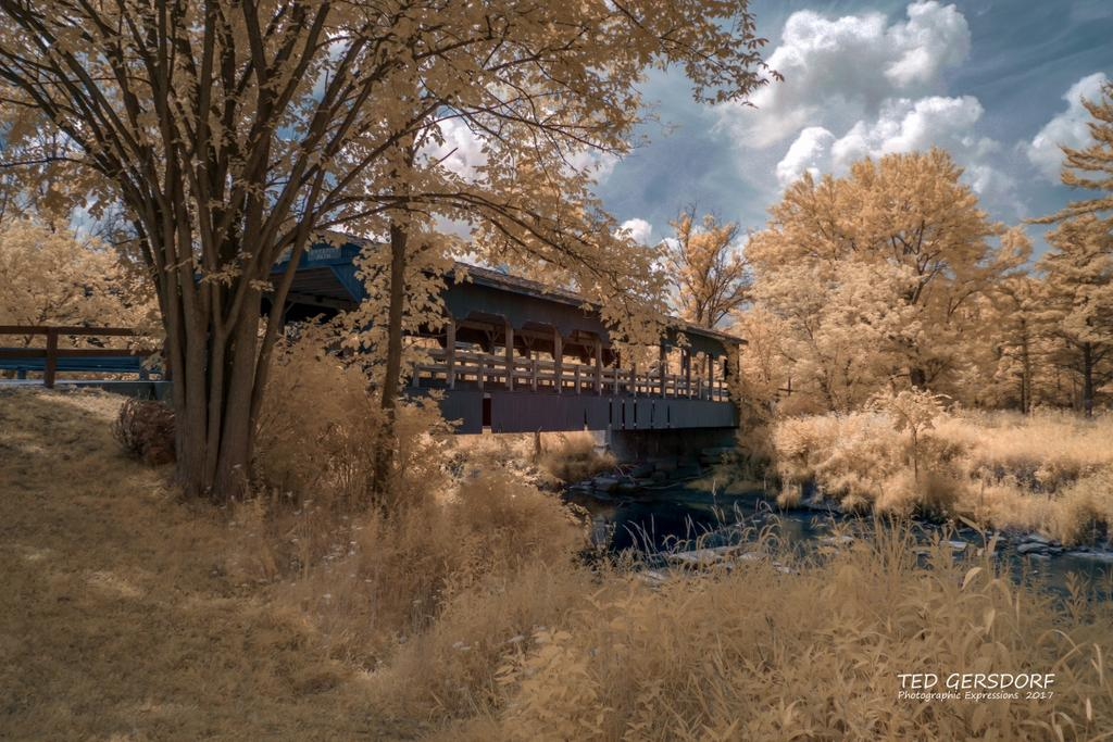 D3300 Infrared Conversion Photos-8-9-17-whitney-bridge-ir-1-1-_01.jpg