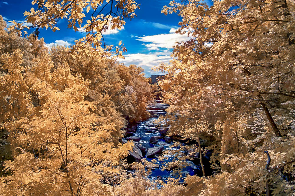 D3300 Infrared Conversion Photos-9-20-17-ir-lr-1-1-8_01.jpg