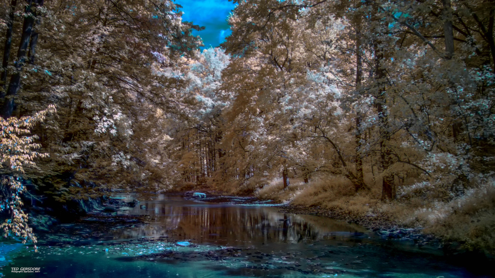 D3300 Infrared Conversion Photos-9-20-17-ir-lr-1-1-11_01.jpg
