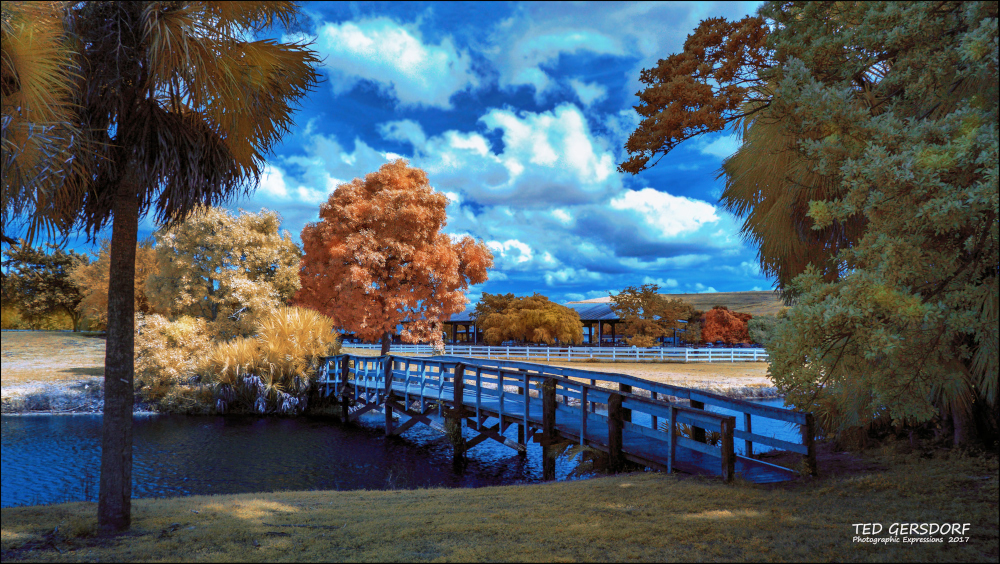 D3300 Infrared Conversion Photos-tradewinds-ir-redo-2_01.jpg