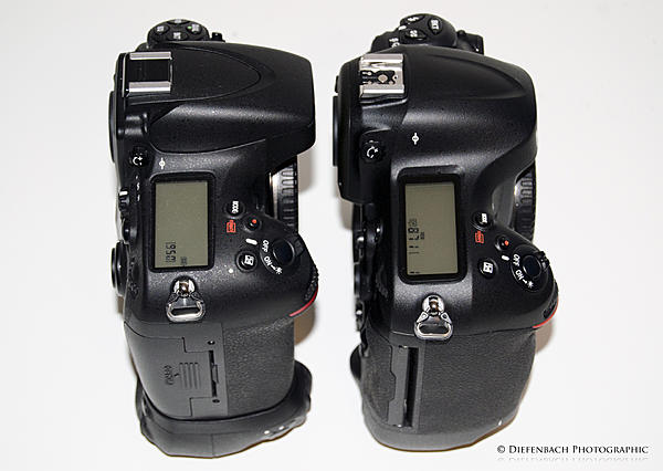 Nikon D4 vs D800 with 85 mm 1.4G and 50 mm 1.4G-d4vsd800rtop.jpg