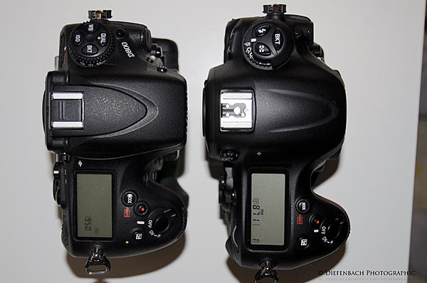 Nikon D4 vs D800 with 85 mm 1.4G and 50 mm 1.4G-d4vsd800top.jpg