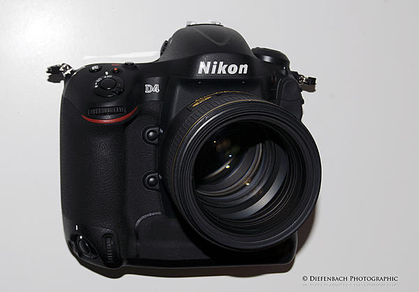 Nikon D4 vs D800 with 85 mm 1.4G and 50 mm 1.4G-d4w85fright.jpg