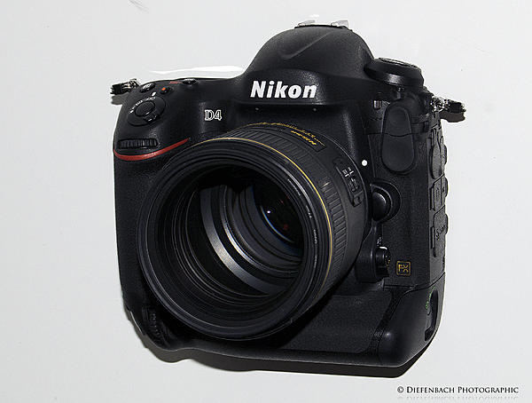 Nikon D4 vs D800 with 85 mm 1.4G and 50 mm 1.4G-d4w85lfront.jpg