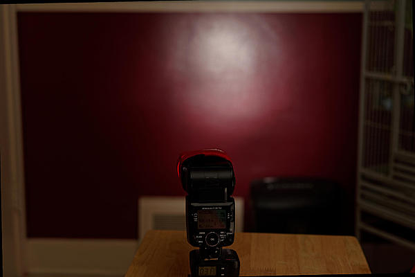 DIY Flash Grid-dsc_9237_dxo.jpg