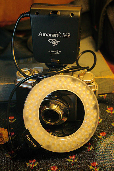 What macro/ring flash has worked the best for you?-dsc_8651-amaran-ring-flash-0001_2-sm.jpg