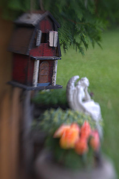 """It's a """"Lens Baby"""" - Lets see some Lensbaby Creativity-sm-birdhouse-dsc_1023-1.jpg"""