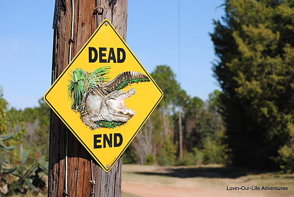 Post your sign post pictures-dead-end-crestview-fl.jpg