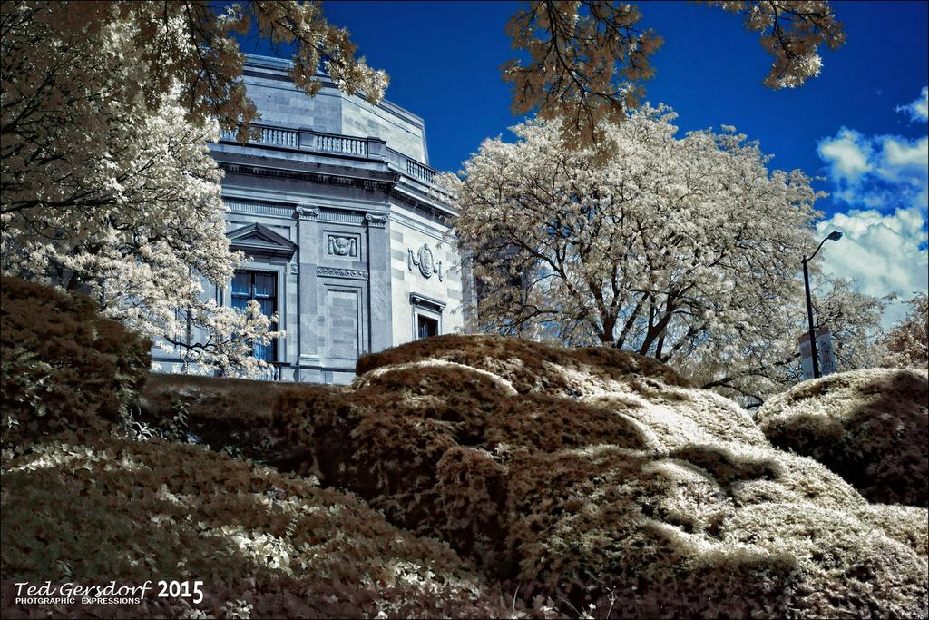 Post Your Infrared Shots-11-15-15-misc-reworks-51.jpg