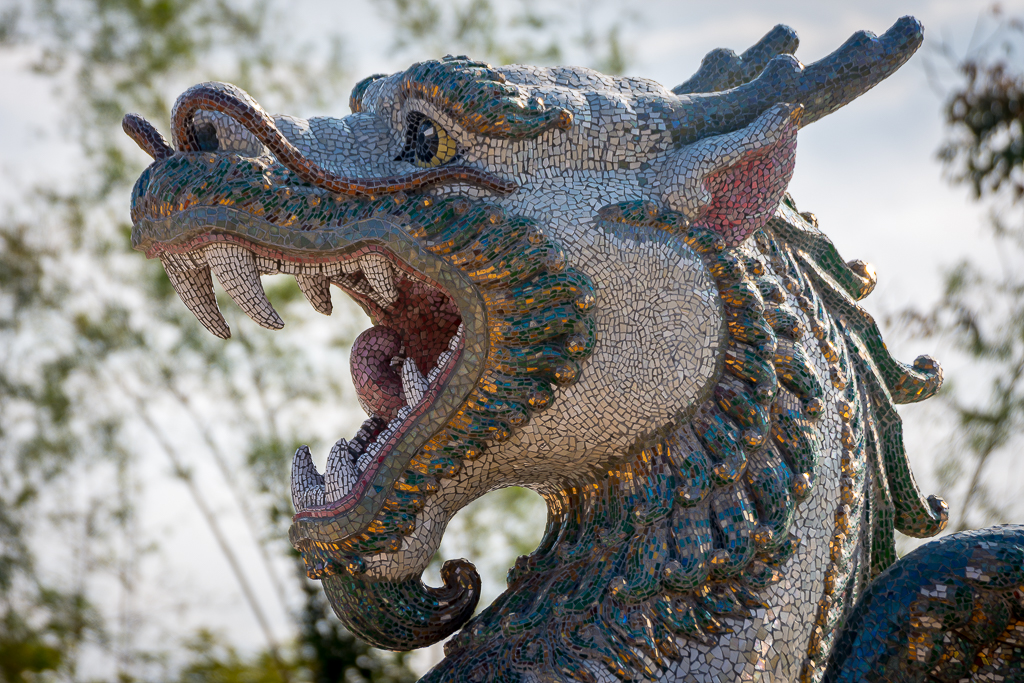 Inspired by the moment-dragon-lion-2.jpg
