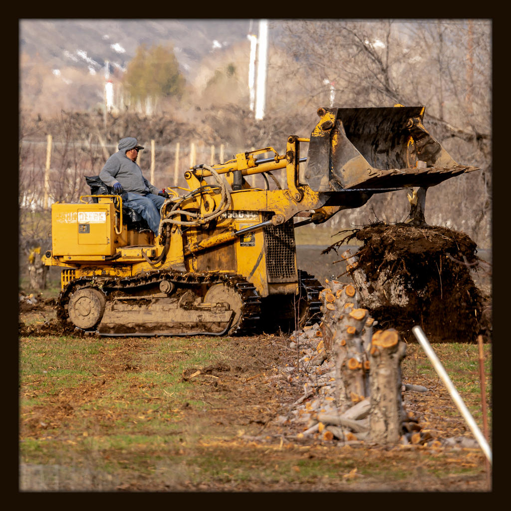 Post Your Heavy Equipment Shots!-610_7165.jpg