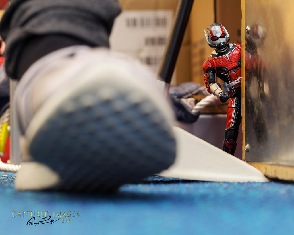 Toy Photography - Let's see them.-w_d85_3786.jpg
