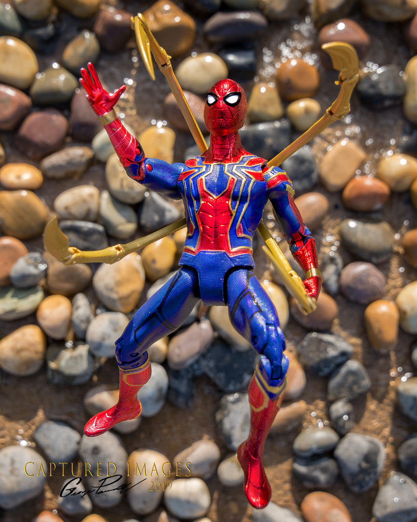 Toy Photography - Let's see them.-w_dsc_8728.jpg