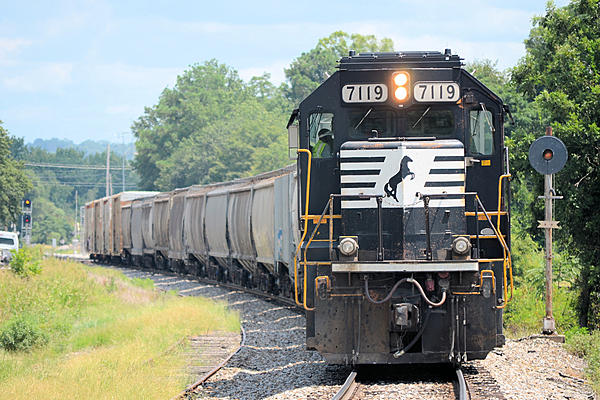 Post your Train shots!-2019-08-17-5970-cayce-sc-upload.jpg