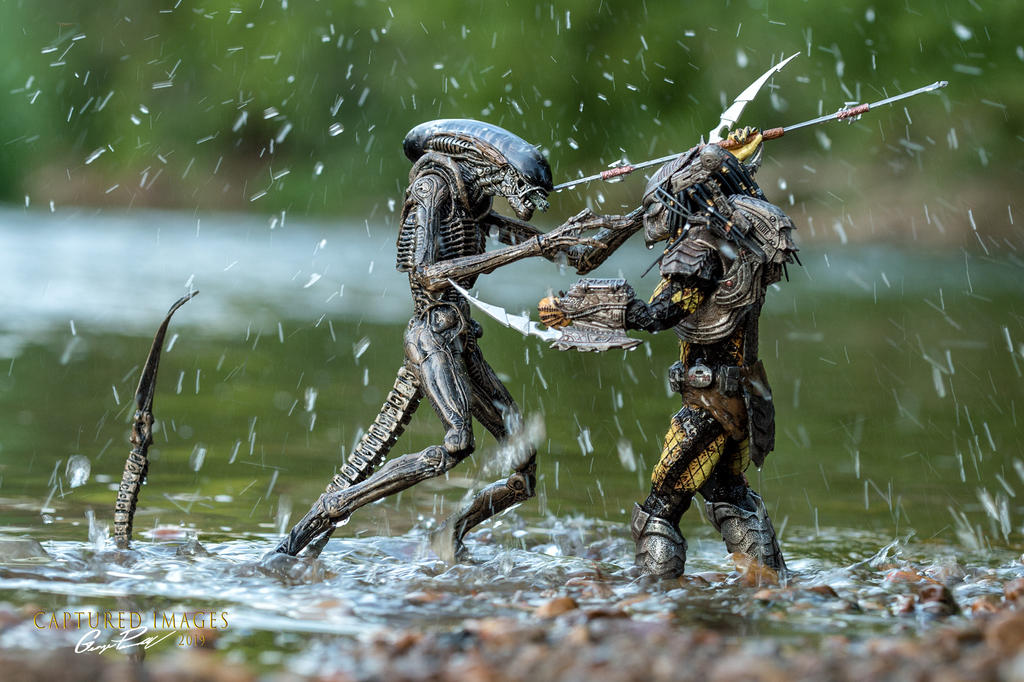 Toy Photography - Let's see them.-w_dfg_8298_wide.jpg